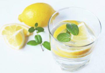 menthe citron, plante aromatique à cultiver au balcon