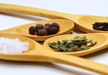 L'origan, herbe aromatique indispensable à cultiver au balcon pour tous les amoureux de cuisine italienne