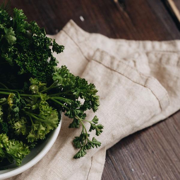 comment prendre soin persil frisé en pot ?