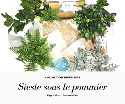 Box de jardinage collection Hiver 2019 Exposition mi-ensoleillée