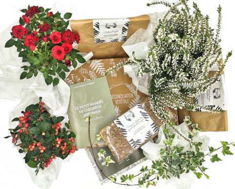 Détail Box de jardinage