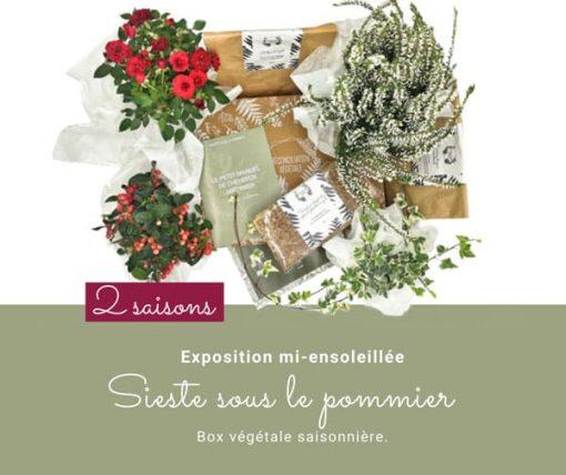 Box de jardinage. Abonnement 2 saisons. Collection Automne 19