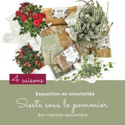 Box de jardinage. Abonnement 4 saisons. Collection Automne 19
