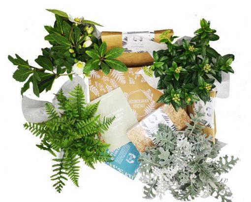 Box de jardinage Hiver19
