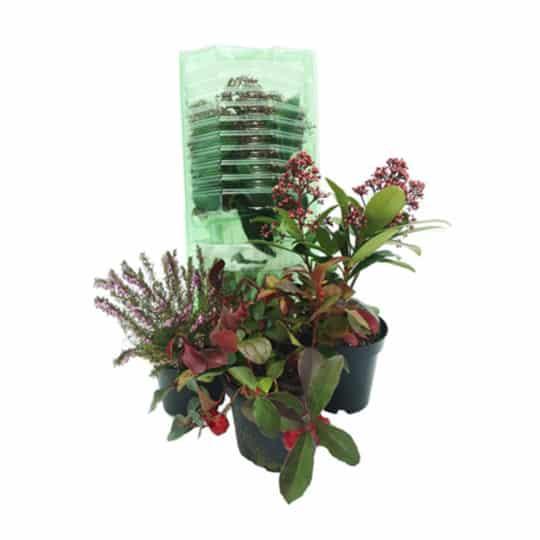 Protection plantes en PET recyclé.