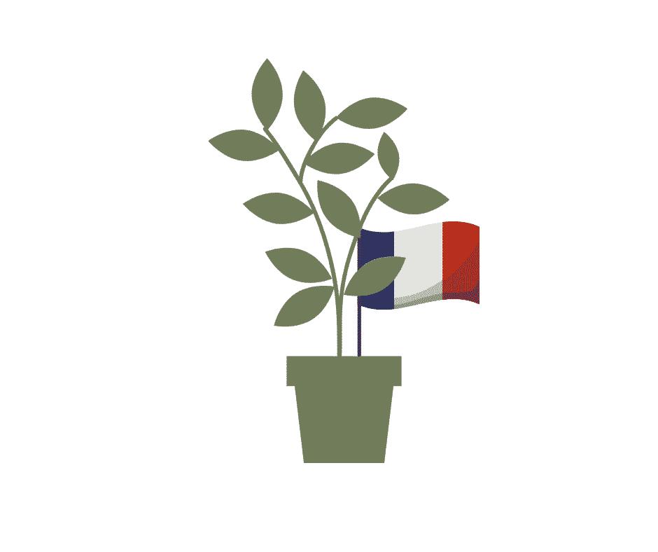 Plantes produites en France. Producteurs et production française.