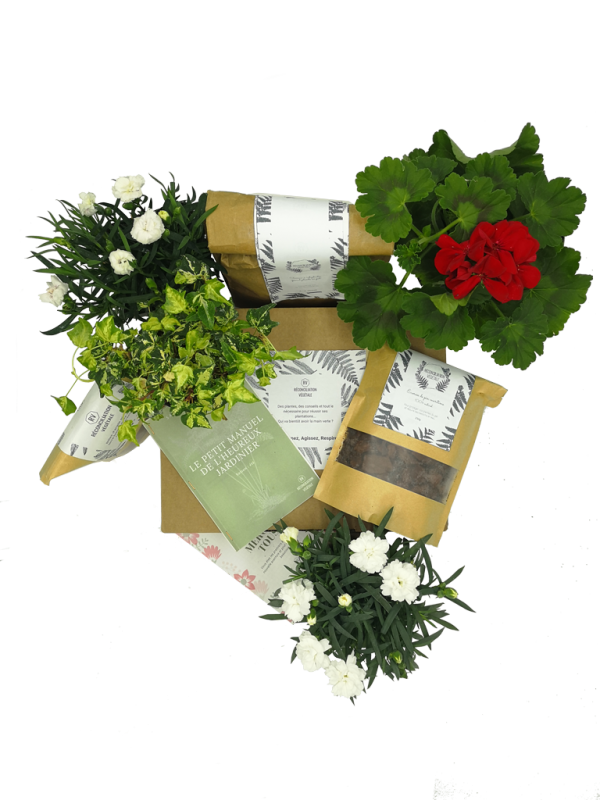 Abonnement box de jardinage et de plantes. Idéal pour les balcons.