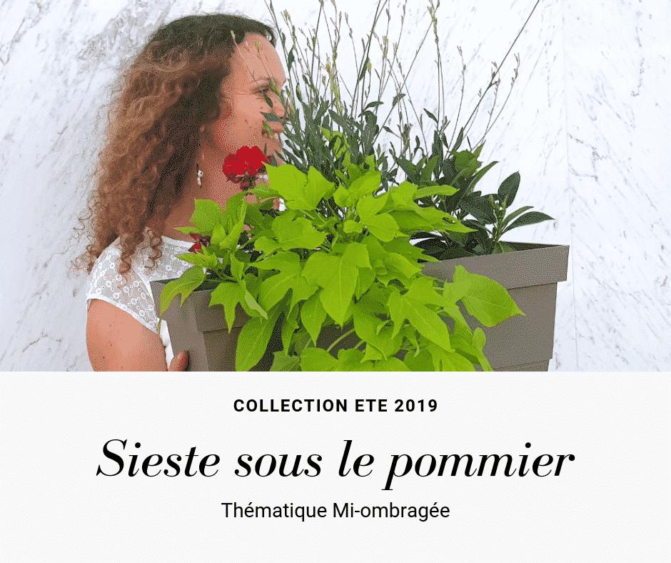 Jardinière d'été réalisée avec la box de jardinage de réconciliation végétale. Mi-ensoleillé