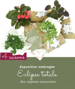 Abonnement box de jardinage et de plantes. Idéal pour les balcons exposition à l'ombre