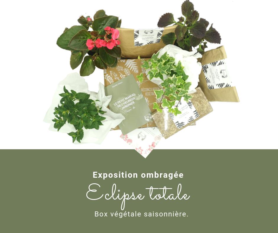 Box de jardinage de saison.