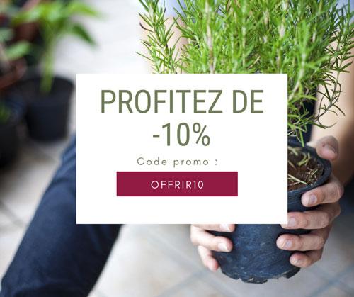 10% de réduction offert pour l'achat d'une Box de jardinage