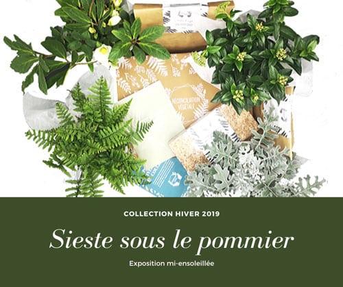 Détail de la box de jardinage d'hiver pour les expositions mi-ensoleillée