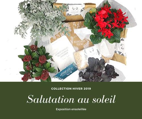 Détail de la Box de jardinage d'hiver pour les expositions ensoleillée