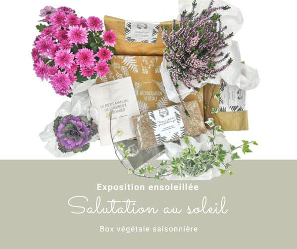 Box de jardinage saisonnière pour les expositions ensoleillées