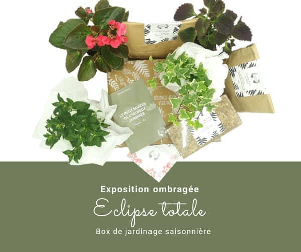 Box de jardinage saisonnière pour les expositions ombragées