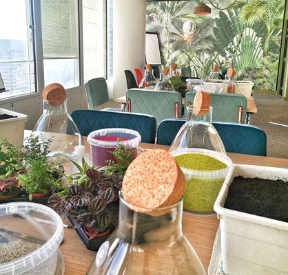 Séminaire d'entreprise et atelier terrarium