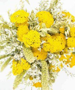 Bouquet de fleurs séchées jaune XXL