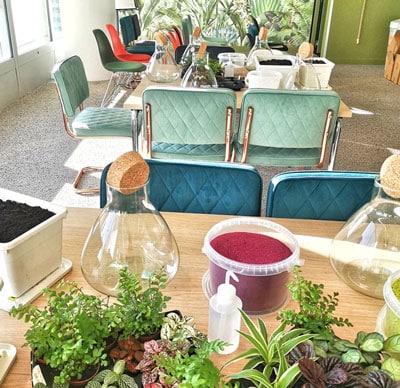 Atelier Terrarium pour vos séminaire d'entreprise