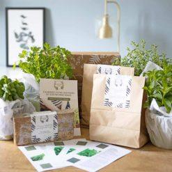 Kit de jardinage pour cultiver des plantes aromatiques sur son balcon