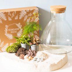 Kit terrarium tout compris