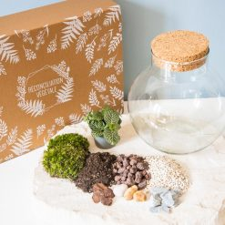 Kit DIY pour terrarium fermé