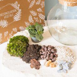 Kit complet pour terrarium humide