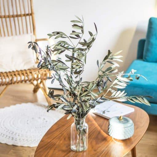 botte olivier provencal sec