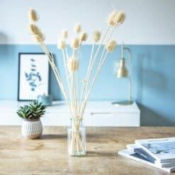 fleurs séchées botte chardon