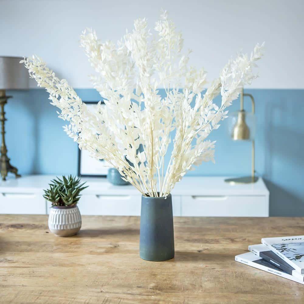 fleurs séchées ruscus blanc