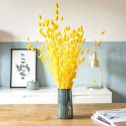 Bouquet de fleurs séchées phalaris jaune